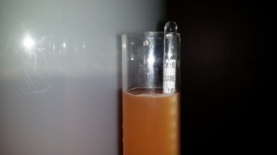 Testing specific gravity