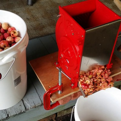 Grinding the crab apples.